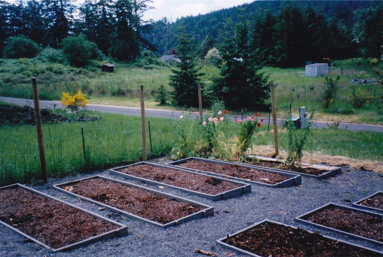 Planting beds and deer proof fence end of summer 2001